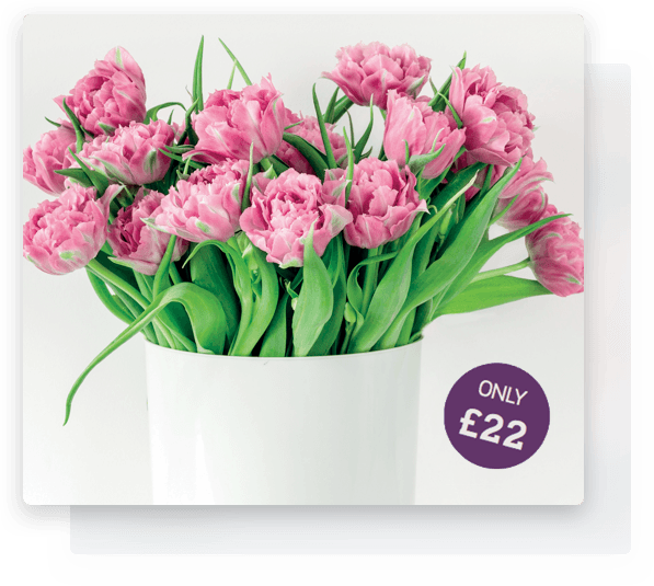 Flower bouquet on offer from Belle & Blossom who offer flower delivery Beaulieu.